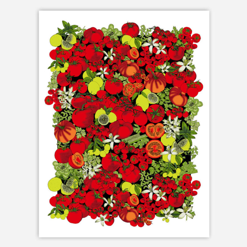 Tomato | Pattern Print